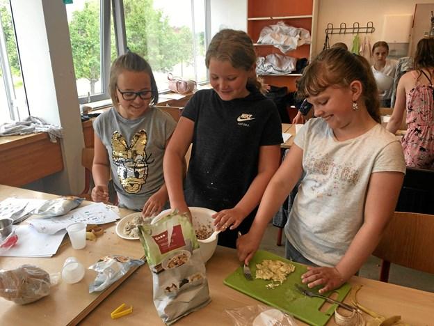 Aktiv Ferie henvender sig til børn i 2., 3., 4., 5. og 6. klasse i Rebild og Mariagerfjord.     Privatfoto