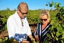 Fiskerdatter fra Læsø lever af luksusvin i Australien