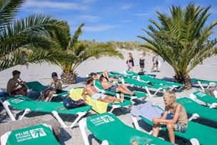 Sommerdage på Palmestranden tiltrækker besøgende