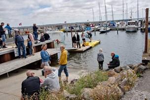 Tilfredshed med havnefesten