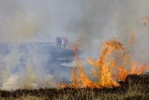 Pressede brandmænd rykker ud til 31 naturbrande hver dag
