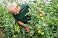 Besøg et moderne landbrug