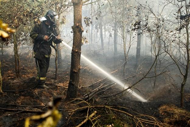 Skovbrande hærger i Sverige: Flere er ude af kontrol