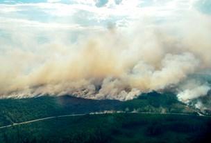 Danske brandmænd skal holde svenske skovbrande væk fra kraftværk