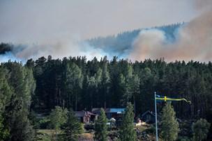 Sverige hårdt ramt af skovbrande: Flere kan være påsatte