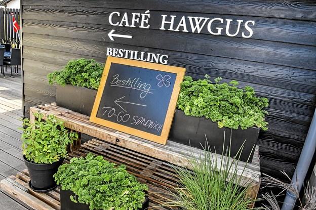 Café Hawgus har udendørs servering på den nyindrettede træterrasse. Foto: Ole Iversen