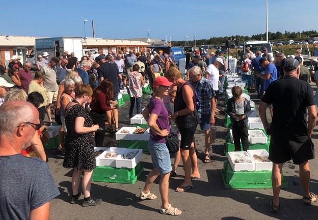 Der var stor interesse for 2018-udgaven af Fiskens Dag. Foto: Carsten Hougaard