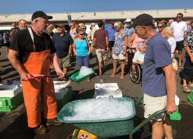 Ole Lassen (t.v.) og Holger Nielsen sørgede i varmen for, at der hele iden kon nyt is på fiskene. Foto: Carsten Hougaard