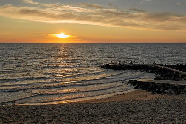 """Det var til en smuk solnedgang, at Lønstrup Koret sammen med publikum sang Inger Lauritzens kendte vise """"Glitrende Hav"""". Foto: Niels Helver"""