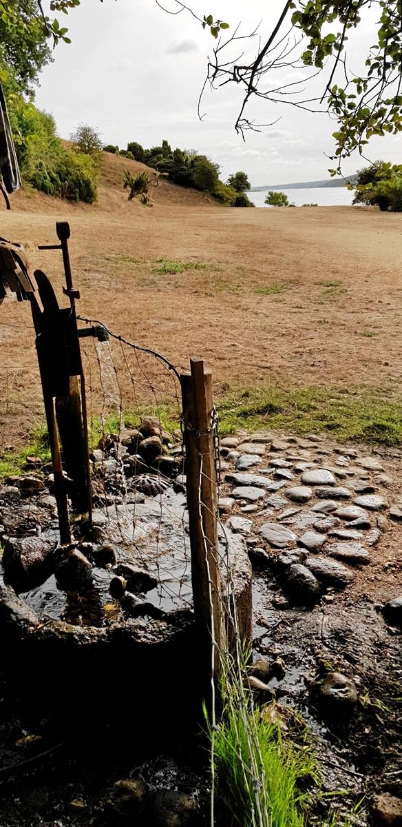 Nu slipper man for at få mudder på skoene, hvis man vil forsynes sig med vand fra kilden på Sildehagen. En viking lavede i weekenden en stenpikning, som man kan stå på. Privatfoto