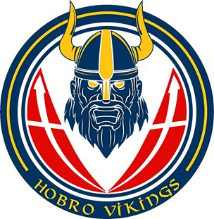 Hobro IK vil satse på e-sport under navnet Hobro Vikings