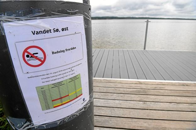 Tarmbakterier: Badning frarådes i dele af sø