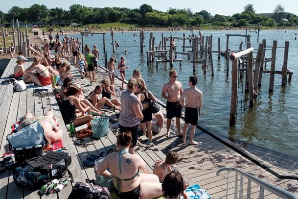 Bakterier i vandet: Ingen badning i Vestre Fjordpark