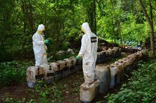 Underjordisk narkogrotte afsløret i Mexico