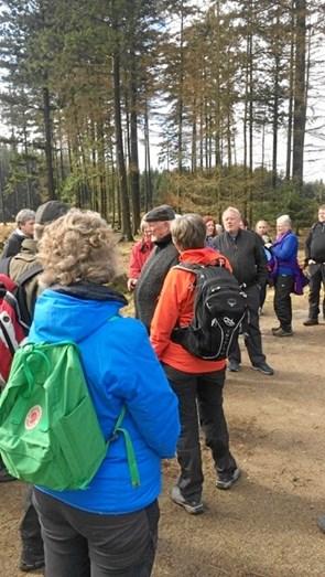 På guidet gåtur i Rold Skov for julemærkehjem