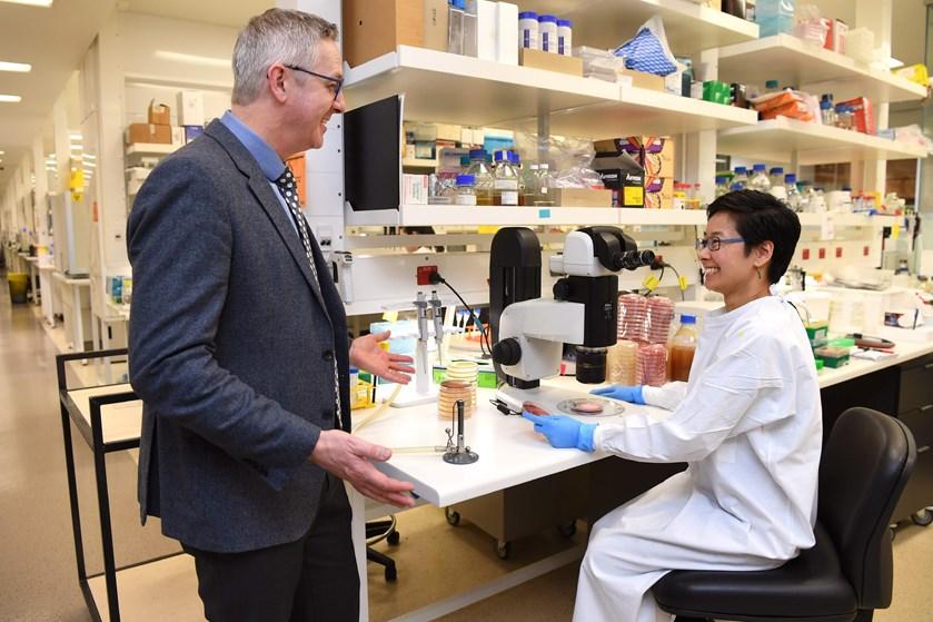 På hospitaler over hele verden har forskere fundet en ny superbakterie, der er resistent over for antibiotika.