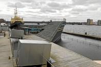 OPGØR: Rotter skal fordrives med list fra Aalborg Havnebad