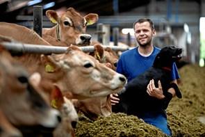 Landbrug åbner stald
