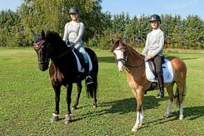 Grandkusiner til DM i pony dressur