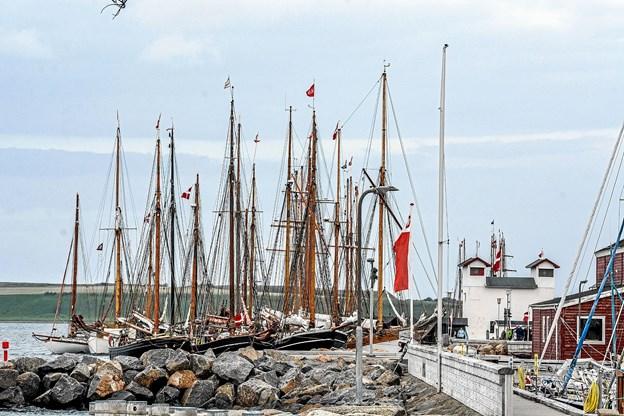 Side om side ligger de smukke træskibe ved kajen i Løgstør mandag aften og venter på start torsdag morgen. Foto: Mogens Lynge
