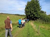 Fælles gåture i hele kommunen