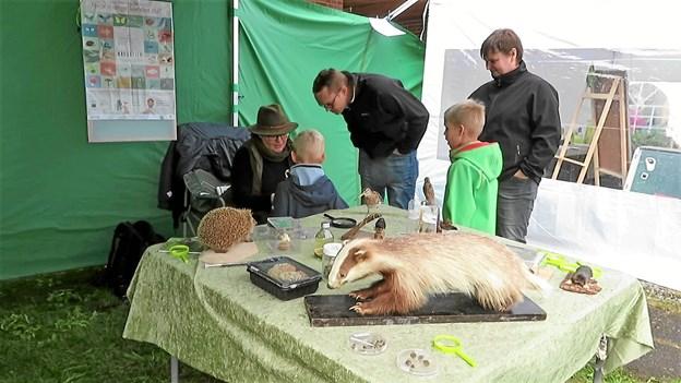 """Ti frivillige fra den lokale DN-afdeling stod for de forskellige aktiviteter i forbindelse med """"Naturens Dag"""". Privatfoto"""
