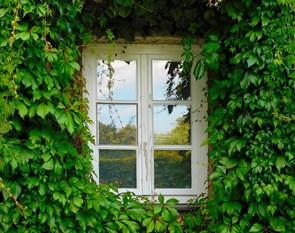 Vælg de rette vinduer til dit hus