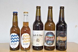 Verdens bedste bijob? Prøvesmag nye øl fra Thisted Bryghus