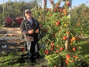 Åbent hus i æbleplantagen Lykkesholm