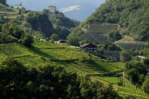 Østrig tilbyder italienske tyrolere østrigsk pas