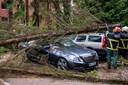 Tabte menneskeliv og trafikkaos i Tyskland efter storm