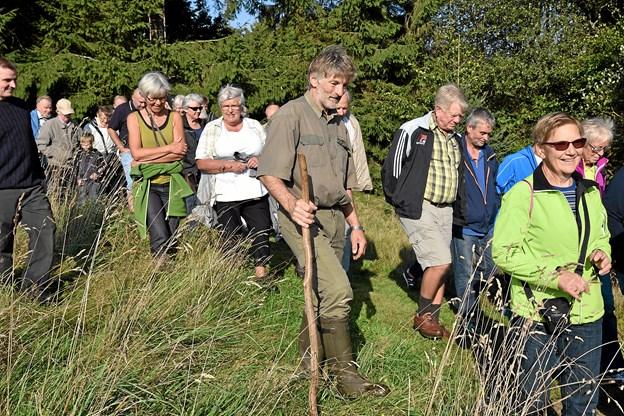 Der er vandretur i Slotved Skov til fordel for kampen mod kræft.  Arkivfoto: Niels Helver