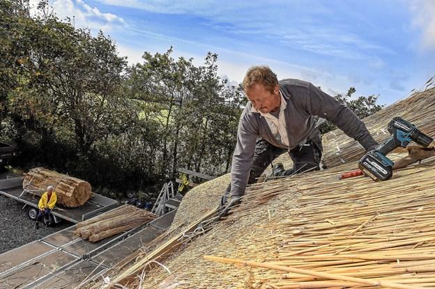 Per Ringgård, Boddum, har travlt som tækkemand over hele Nord og Midtjylland. Foto: Ole Iversen