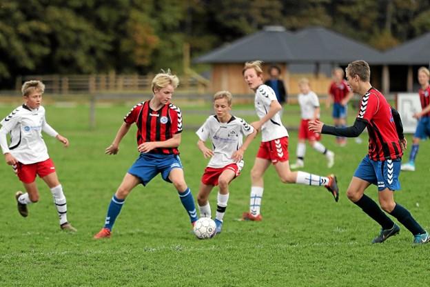 Drengene fra Hals i hvide bluser vandt søndag 2-1 hjemme over Aalborg Freja. Foto: Allan Mortensen