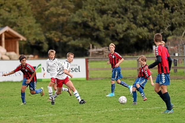 Med sejren kom Hals-drengene op på 15 point. Foto: Allan Mortensen