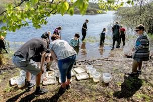 Der mangler to elever: Naturfriskole i Strandby lukker til nytår