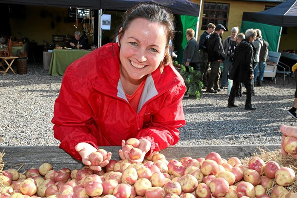 Hidtil bedste kartoffelfestival