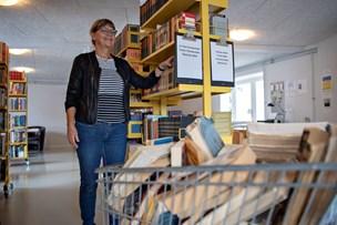 Fra landsby til bogby: - Ingstrup skal være en by, hvor det er godt at bo