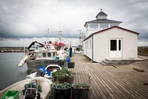 Lokale ønsker ro over havn i Sillerslev