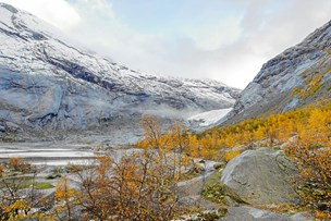 Se døgnets nordjyske billeder