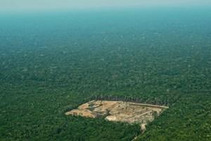 WWF og Netflix er gået sammen om en stor naturdokumentar, der skal vise menneskets trussel mod naturen.