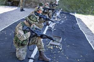 Efter 70 år som et frivilligt korps satser hjemmeværnet i stigende grad på at styrke sin militære profil.