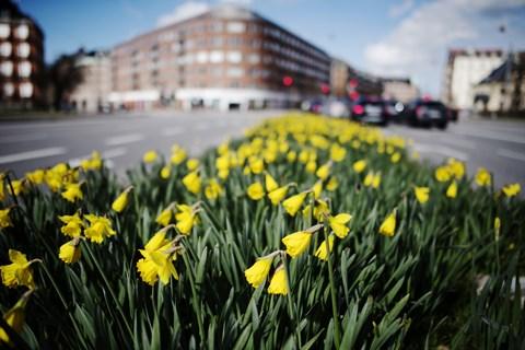 Med lune temperaturer og masser af sol bliver der rig mulighed for at bruge påskedagene udendørs, siger DMI.