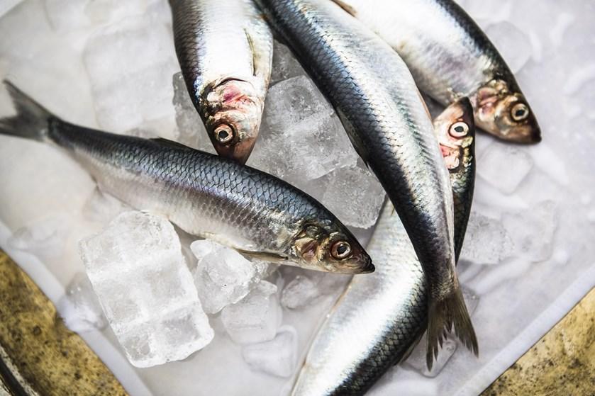 Især midaldrende mænd bør skrue ned for kødet og op for fisk. Måltidskasser kan hjælpe på vej til mere fisk.