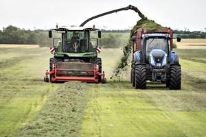 Tirsdag og onsdag kommer der masser af væde. Græsset kommer nok til at stå højt, siger DMI.