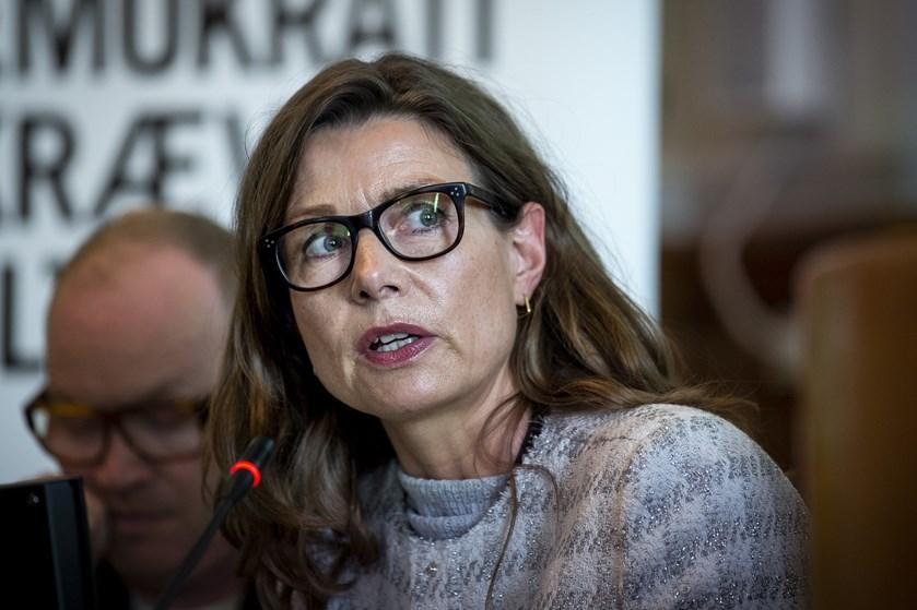 Ja til permanent grænsekontrol nu, siger Naser Khader. Det er ikke partiets politik, mener Pernille Weiss.