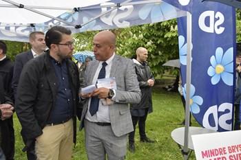Mens Dansk Folkeparti får afklapsning i dansk EU-valg, står Sverigedemokraterna i Sverige til fremgang.