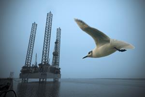 Regeringen vil hente milliarder i Nordsøen