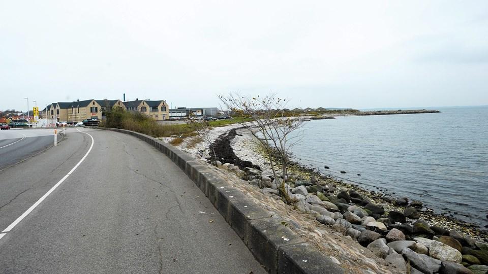 Byrådet har nu åbnet for den egentlig debat om forslaget til lokalplan for Sydhavnen.Foto: Diana Holm