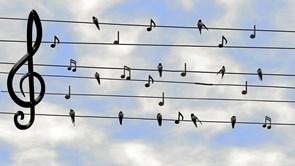 Syng med fredag - og sig god morgen